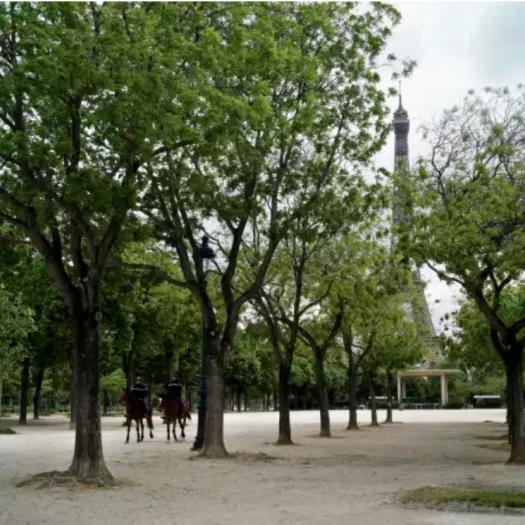 Le Champs-de-Mars, à Paris, le 29 avril. THIBAULT CAMUS / AP
