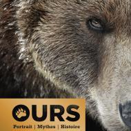 Ours, Portrait, Mythes, Histoire