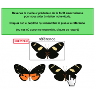 exemple pour jouer à  The Butterfly Game