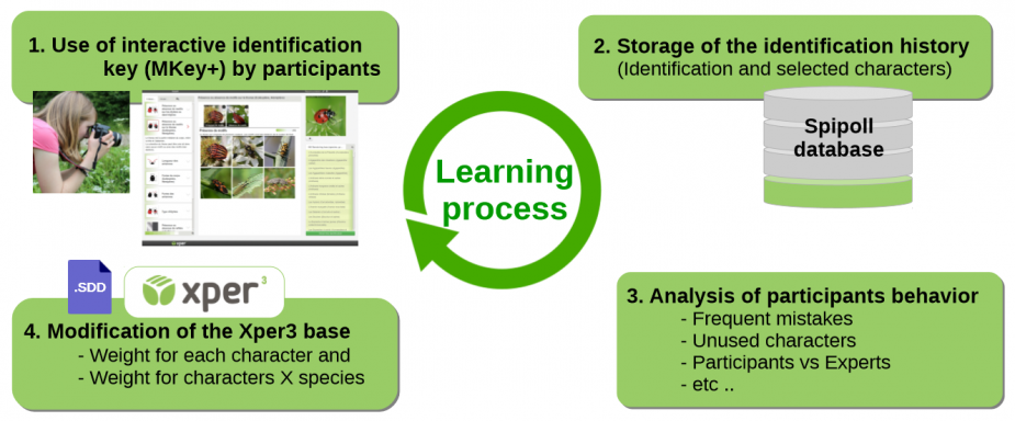 Xper3 learning process